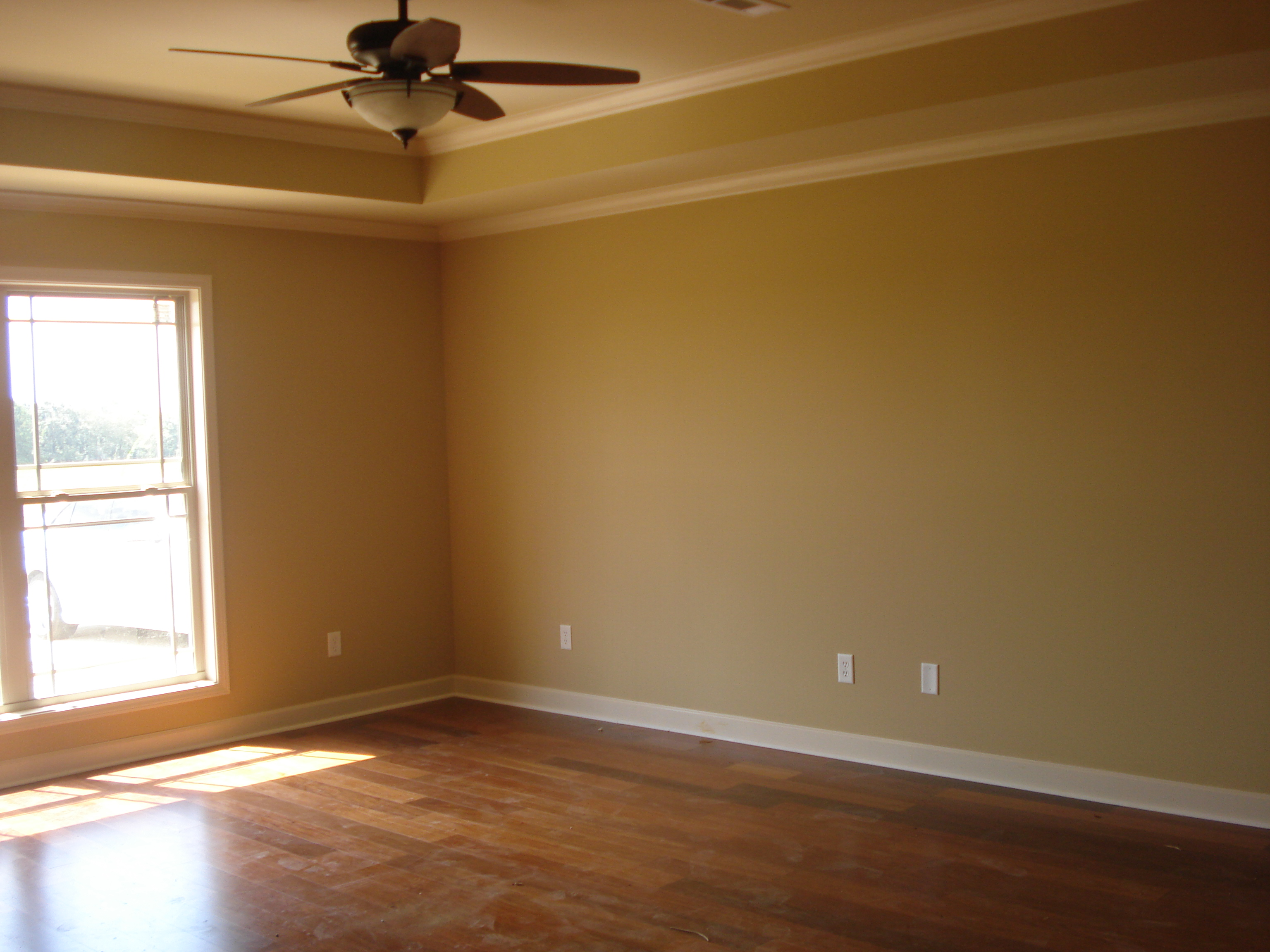 Large Living Room With Trey Ceiling Fan