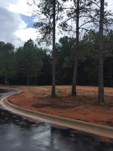 Liberty Park Phase Ii Now Available Large Lots